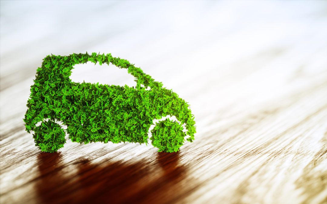 Small Changes to Drive Green